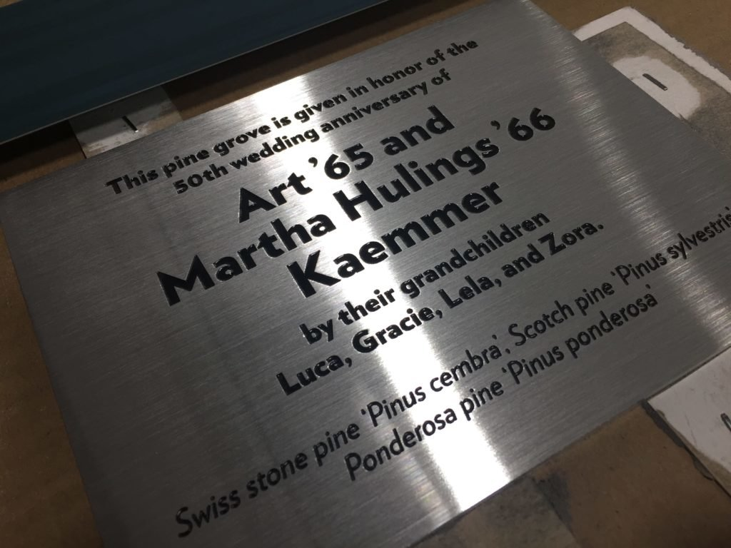 Engraved Metal & Paint Filling on Plaque
